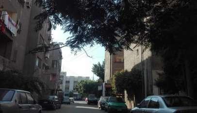 حي ألماظة