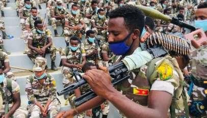 تحالف التيجراي والأرومو ومستقبل الدولة الإثيوبية